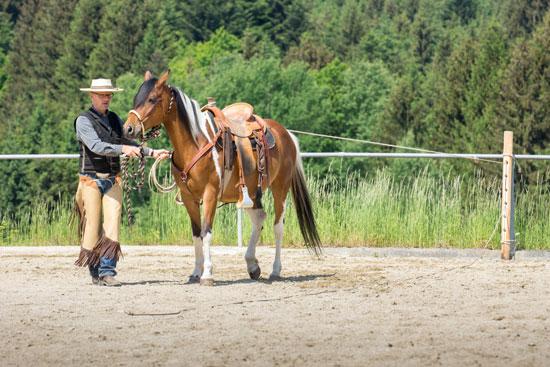 Schöner Trainingseffekt: Während der Reata-Vorbereitung können sich Pferde an viele Aspekte des Roping gewöhnen (z. B. an die Geräusche des gleitenden Seils und an starken den Zug der Reata).