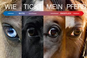 Pferde verstehen - Wie tickt mein Pferd