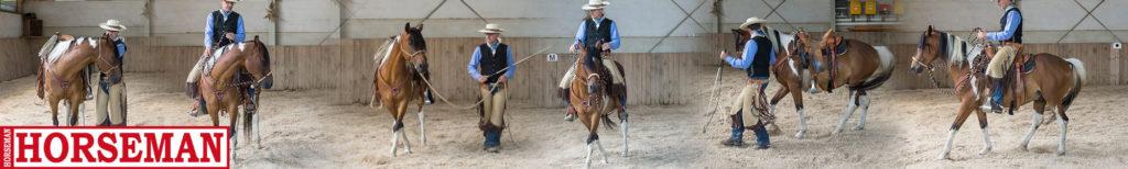 Beitrag Zeitschrift Horseman: Vom Boden in den Sattel