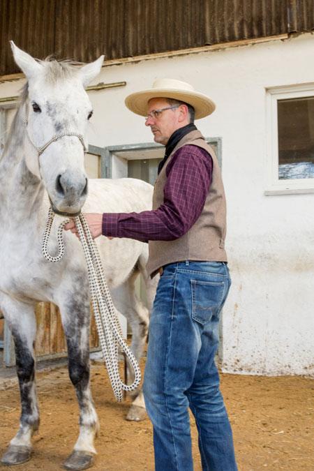 Bewegt sich das Pferd von der Stelle (auch nur minimal), hört sofort jegliches Lob auf...