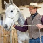 Wendet das Pferd seinen Kopf von seinem Menschen ab, führen wir durch leichte Impulse mit Hand oder Führstrick den Kopf wieder in die Ausgangsposition zurück.