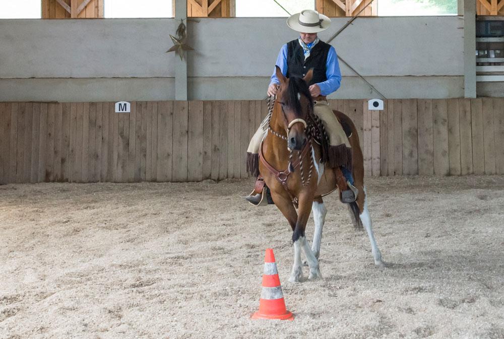 Auch das Schenkelweichen auf der Volte kann mit wenig sichtbaren Hilfen geritten werden, weil unser Pferd die Bewegungsmuster per Bodenarbeit abgespeichert hat.