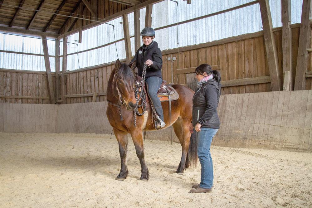 Auch im Sattel gilt, reagiert das Pferd nicht auf unsere Schenkelim-pulse, nehmen wir zur Verstärkung die Zügelhilfe dazu.